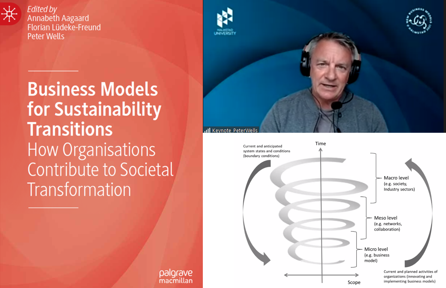 'I freed Nelson Mandela' – Prof. Peter Wells on business model innovation and sustainability transitions – And a new book